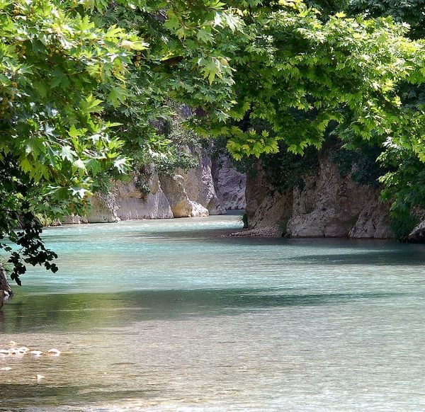 Plane trees at the Acheron river banks in Parga, a breathtaking place.